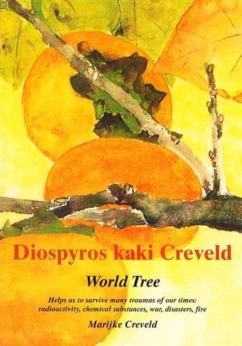 Diospyros Kaki Creveld: World Tree - Marijke Creveld