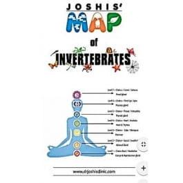 Joshis' Map of Invertebrates - Bhawisha and Shachindra Joshi