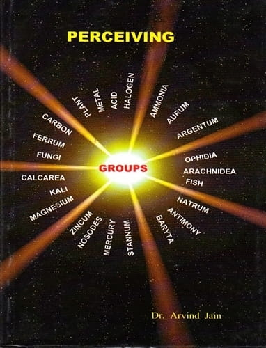 Perceiving (Groups) - Arvind Jain