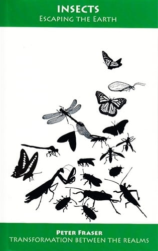 Insects: Escaping the Earth (Extended 2010 Edition) - Peter Fraser