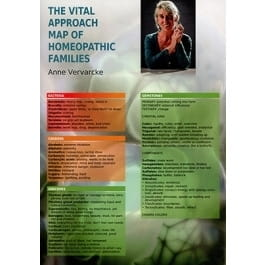 The Vital Approach Map of Homeopathic Families - Anne Vervarcke