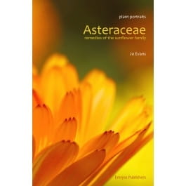 Asteraceae: Remedies of the Sunflower Family - Jo Evans