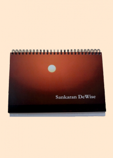 DeWise - Rajan Sankaran