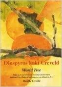 Diospyros Kaki Creveld (World Tree)