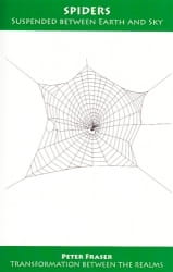 Spiders: Suspended Between Earth and Sky